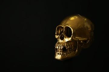 Golden human skull on dark background