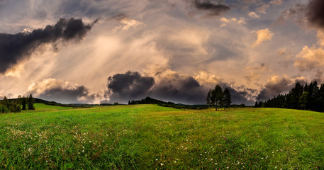 green fresh spring meadow and sunset sky  - panoramic picture