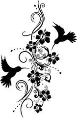 Kolibris mit Hibiskusblüten und filigraner Ranke. Hummingbird.