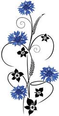 Filigrane Ranke mit Kornblumen, Blumen und Gräser. Sommer Design.