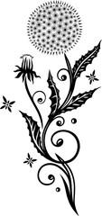 Löwenzahn mit Blättern und kleinen Sternen. Pusteblume, Sommer, schwarz.