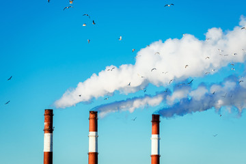 The smoke from the chimneys on background of blue sky - heating systems