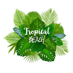 Summer tropical palm and exotic tree leaves poster