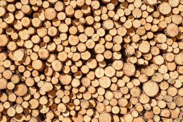 Aluminium Prints stacked wooden logs