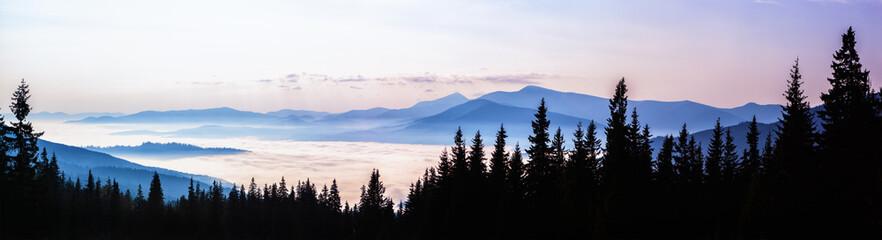 Aluminium Prints View from Dragobrat ski resort on Mount Hoverla 2061m.