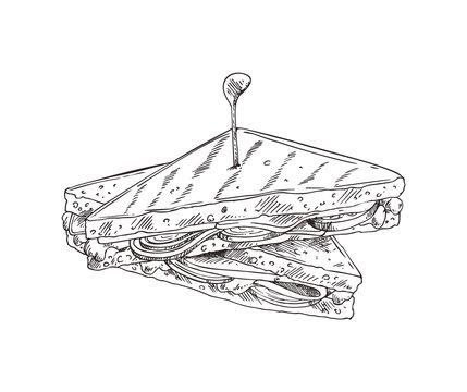 Sandwich Monochrome Sketch Vector Illustration