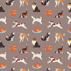 Seamless pattern with cute dogs of various breeds playing, running, walking, sitting, sleeping. Backdrop with adorable cartoon pet animals on grey background. Flat cartoon vector illustration.
