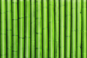 green bamboo fence background, green bamboo texture stack