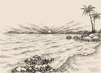 Sunrise on the beach drawing. Sea view and palm trees on shore