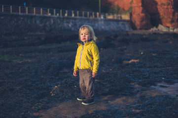 Little toddler on the beach at sunset in winter