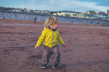 Little toddler walking on the beach in winter
