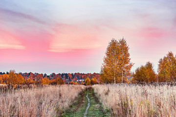 Autumn view of the path by the meadow.