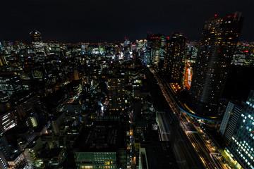 Tokyo city and skyline with night light
