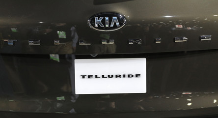 Kia Telluride is unveiled at the North American International Auto Show in Detroit, Michigan