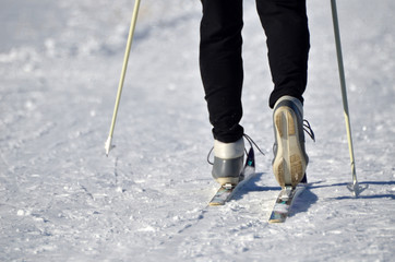 Close up of cross country skis on feet.