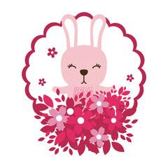 rabbit round icon