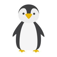 Cute penguin. Polar bird from cold climate