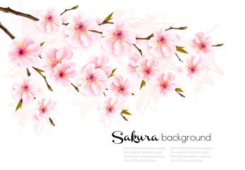 Wall Mural - Spring nature background with sakura branch. Vector