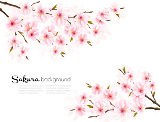 Spring background with Sakura japan cherry branch. Vector