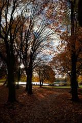 fall park days