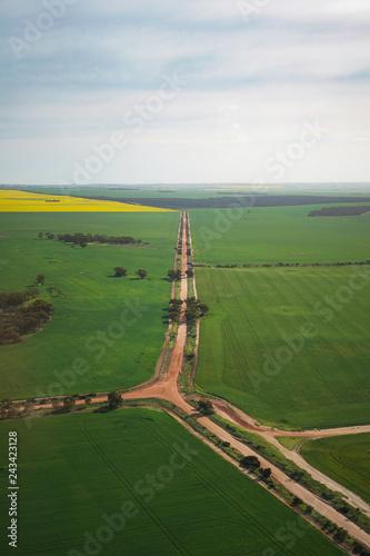 Red Roads Through Green Crops Fields