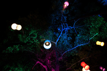 Colorful light probe is decorated on a colorful tree