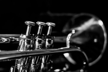 Classic musical cornet of black and white. Wall mural