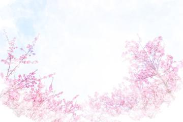 河津桜 Cherry Blossoms