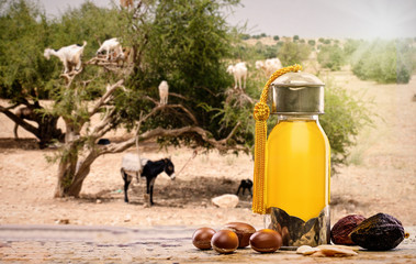 Argan oil and fruits with argan tree in the background