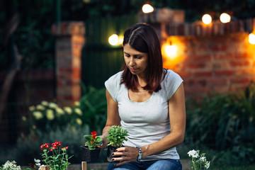woman transplanting a seedling in her garden. night scene