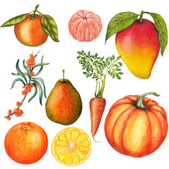 Hand drawn set of isolated fresh food