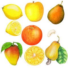 Hand drawn set of isolated fruits