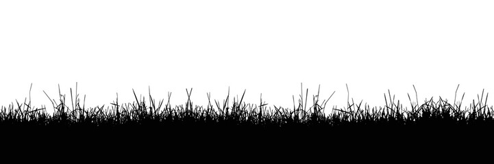 Seamless realistic illustration of a grass stalk or lawn, isolated on a white background, vector