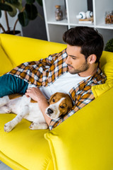 handsome casual man lying on yellow sofa with beagle dog