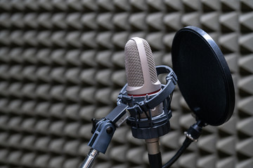 microphone in the Studio for close-up recording