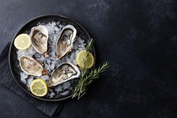 Fresh oysters in a plate with ice on black background