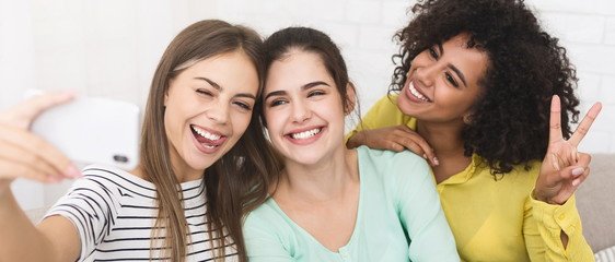 Happy female friends taking selfie, enjoing their time together