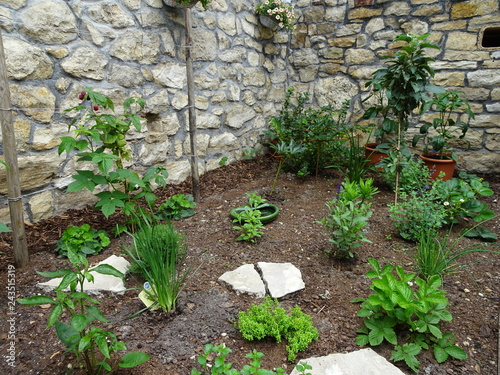 Garden Design New Planting Of Beds With Plants Shrubs And Fruit Trees