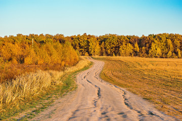 Autumn view of the road by the meadow.