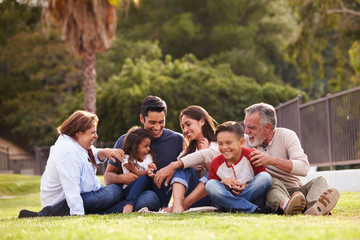 Happy three generation Hispanic family sitting on the grass together in the park, selective focus Wall mural