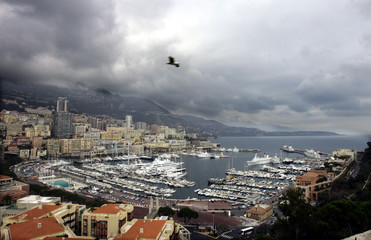A bird flies above Monaco harbour.