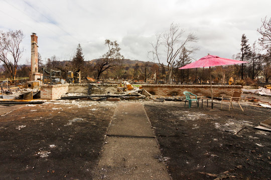 Red Umbrella - Crying into the Viewfinder: One Month After the 2017 Sonoma County Wildfires