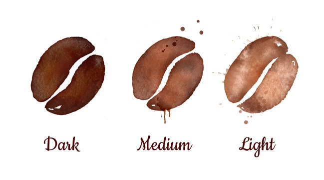 Watercolor illustration of coffee roasting levels