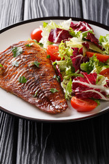 Baked pike fillet served with fresh vegetable salad close-up on a plate. vertical