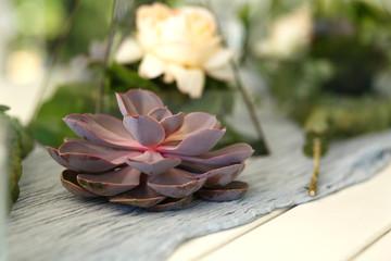 Florarium with fresh succulent and rose flowers festive table decoration. Event fresh flowers decoration. Florist workflow. Wedding banquet design