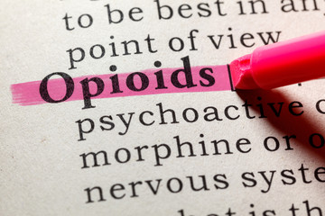 definition of opioids