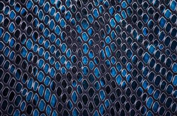 Wall Mural - Blue snake skin background