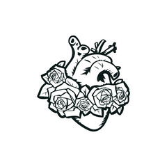 Anatomical heart with roses vector illustration