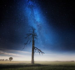 Surreal night and village landscape with field under stars.