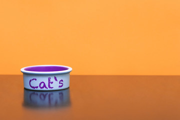 """Cat dish with food on orange background. Pet plate with the words """"Cat`s"""" is isolated on an orange background. Copyspace"""